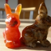 Hasen / Kaninchen